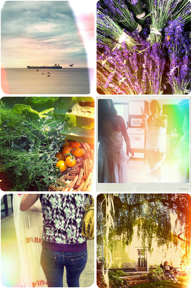 {sequim} summer collage