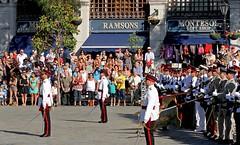 A Royal Parade 543