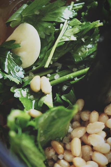 015 Celery Pesto