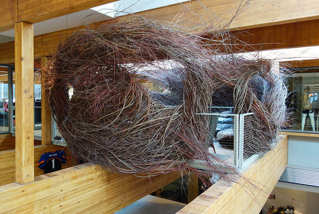 The Nest at Wieden+Kennedy