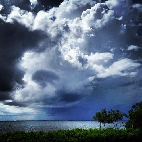 Storm (242/366) by elawgrrl