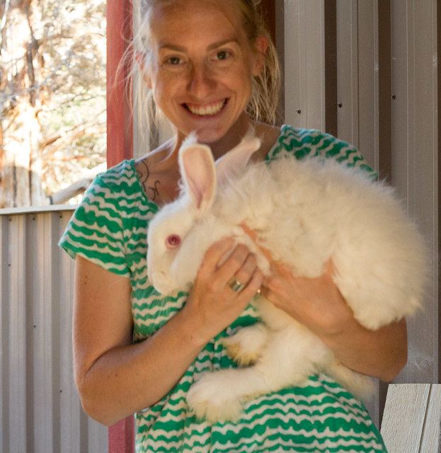 bunny8 (1 of 1)