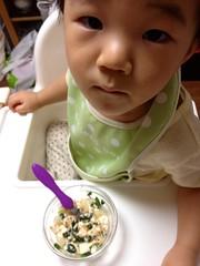 朝御飯。久しぶりにほうれん草入れたら食いつき悪い (2012/9/6)