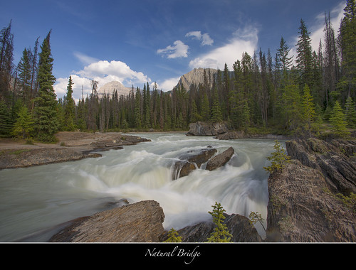 Bridge Under Troubled Water...Kicking Horse River-Yoho, BC