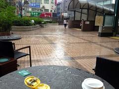 雨が激しく - 朝散歩 (2012/9/8)