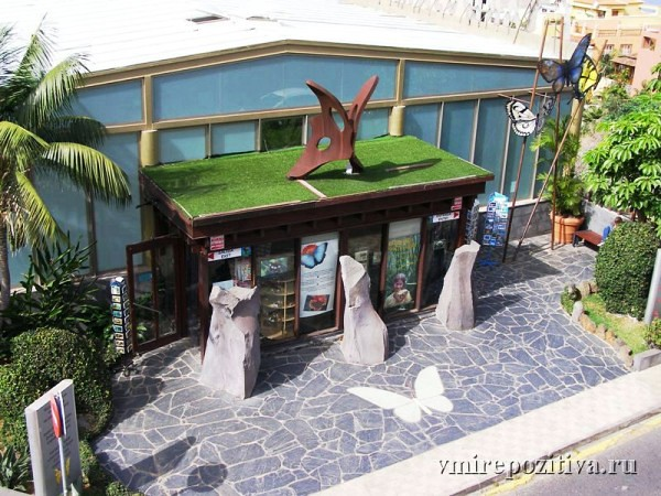 Тенерифе - центр тропических бабочек
