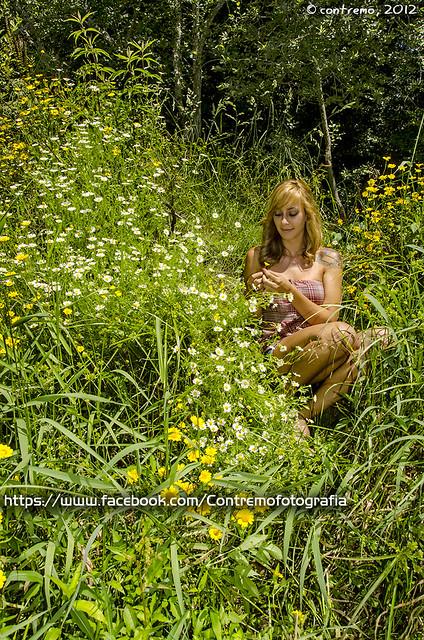 Flores esquivas (296000 visitas)