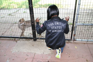 Carmelita Jeter and cheetah cub