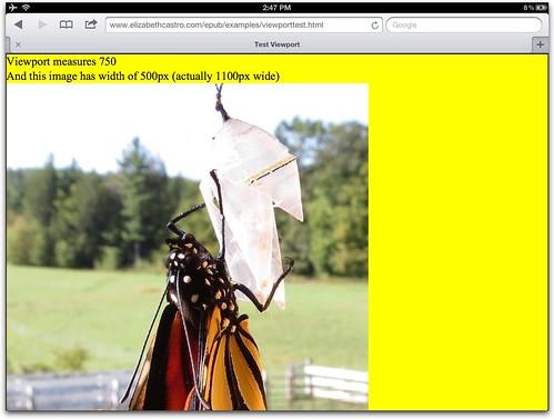 Viewport=750, image width=500