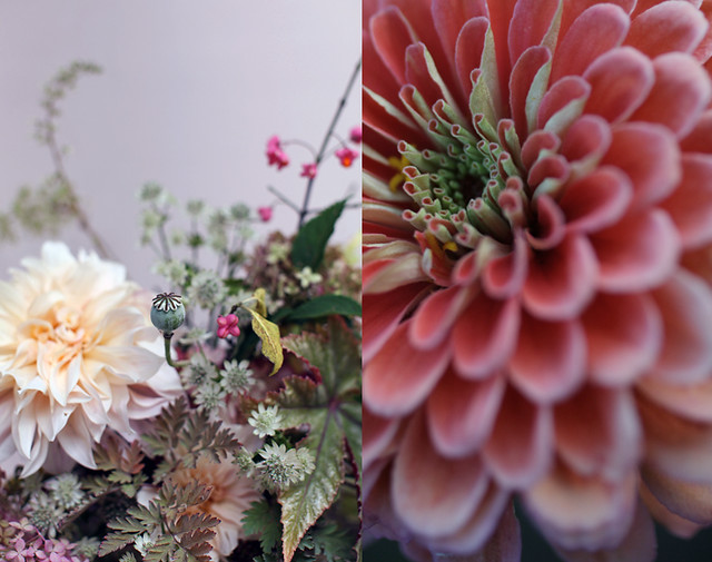 september_flowers