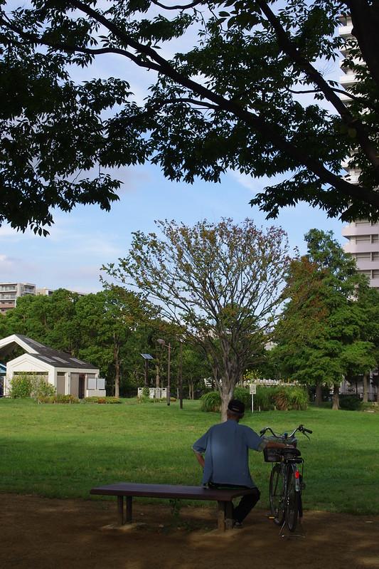 2012-0918-pentax-kx-M_40_80-012