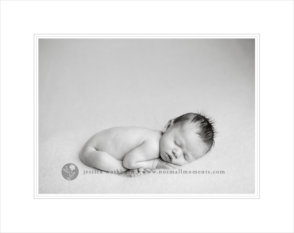 Clifton Park newborn photographer