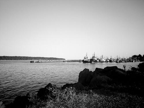 image_coast_discovery_marina_