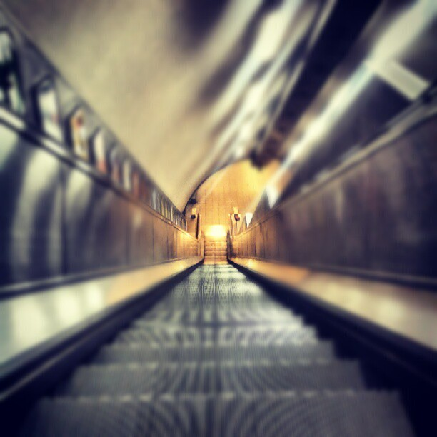 Follow the light #emptyunderground