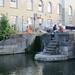 Lovebirds at Hawley Lock