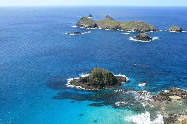 Sugar Loaf Islands Tours