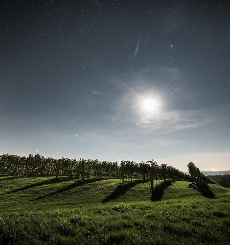 abend mond nacht himmel burgenland wein weinberg sterne lese weinlese strem