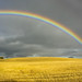 Rainbow by DCV Fotografia