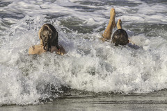 Fun at the Beach....
