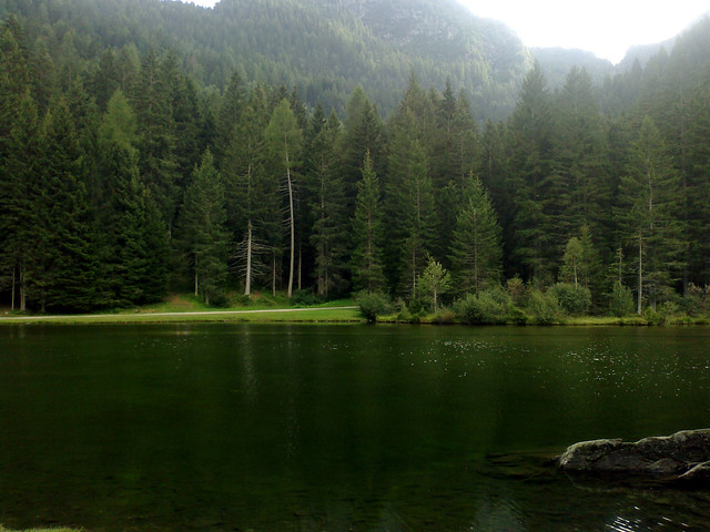 Lake Of Roes