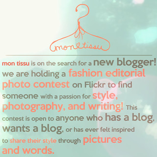 Mon Tissu - New Blogger Search! Fashion Editorial Photo Contest!