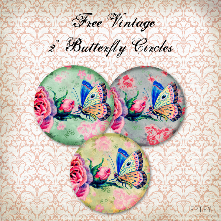 free vintage 2 in butterfly circles web ex by FPTFY