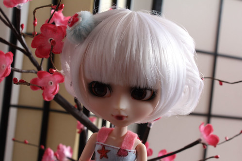 Julia (Pullip Bloody Red Hood) Act 13/08 7901361848_b925e887d4