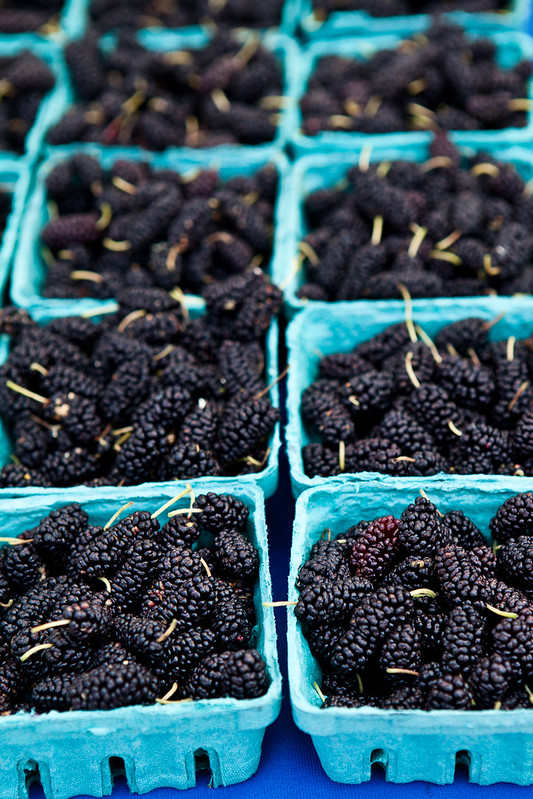 Mulberries at Corvallis Market