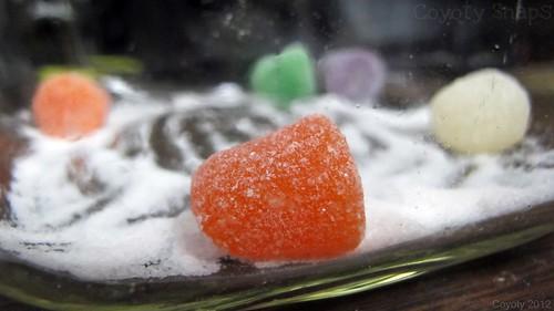 Sugar & Spice by Coyoty