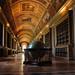 Bibliothèque - Château de Fontainebleau ©amador_emmanuel34