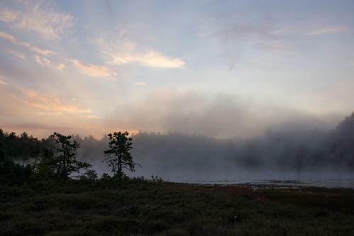 morning sunrise dawn unitedstates newhampshire bog amherst
