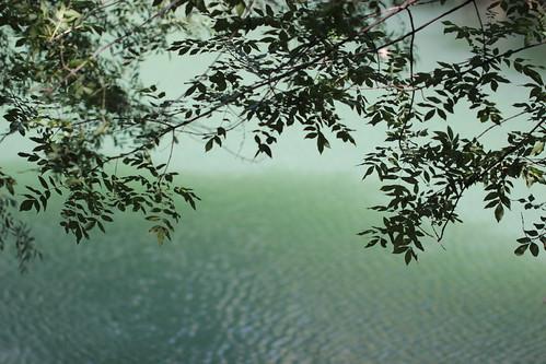Lez river