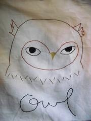 Erin Paisley owl