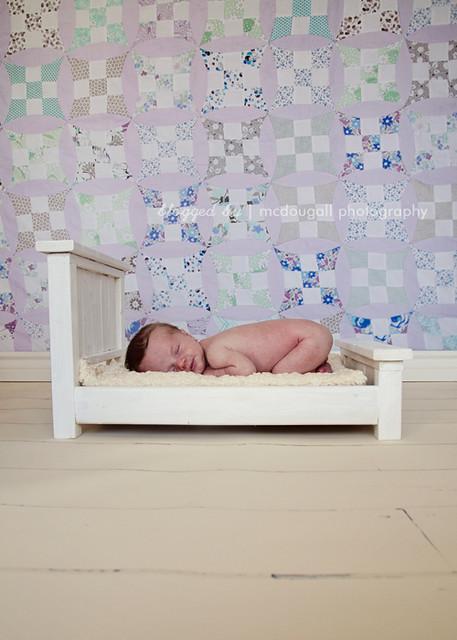 Day 183 - Newborn Max