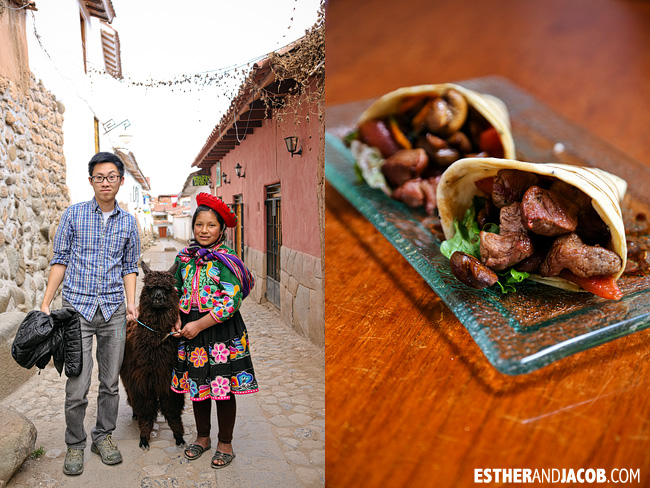 Alpacas: Pet them and eat them | What to do in Cusco | Peru Travel Photographer