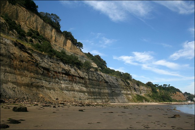 The coast south of Shanklin