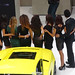 8034744089 6384c80651 s eGarage Paris Motor Show Lamborghini model