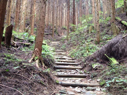 金剛山登山(高天彦神社から)-19