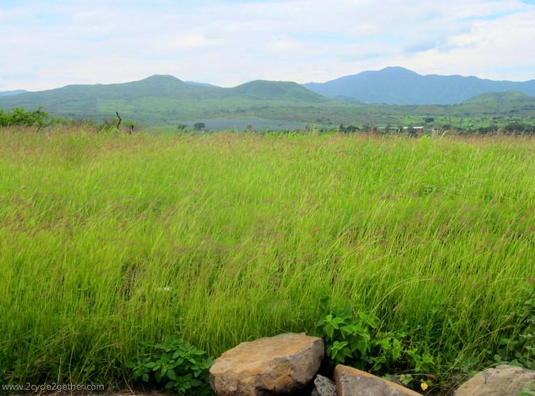 Grasses, Ixtlán, Nayarit to Magdalena, Jalisco