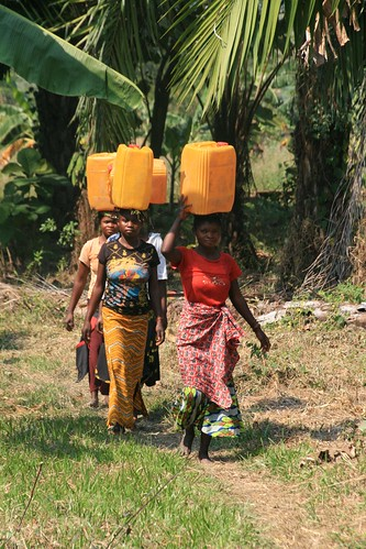 primary and basic transport in Congo