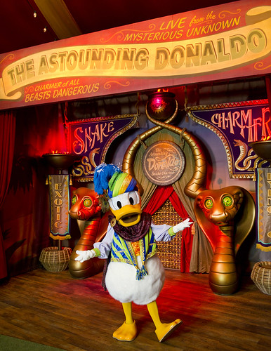 The Astounding Donaldo