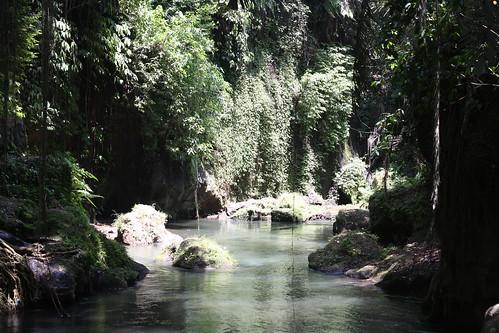 around Ubud