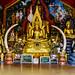 Doi Suthep - More Golden Buddhas by Anoop Negi