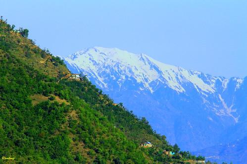 View near Patnitop , Kashmir