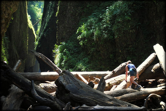 a hiker carefully navigates the log jam at Oneonta Gorge