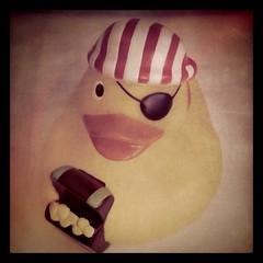 Piraten-Ente