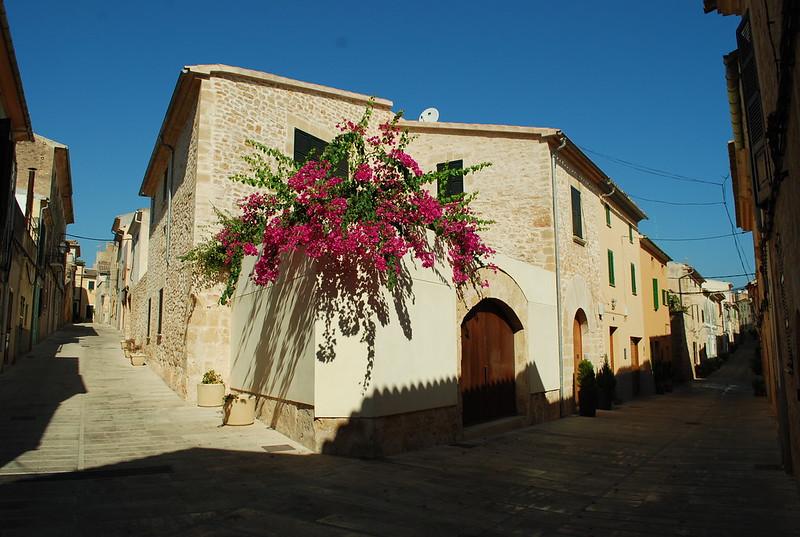 DSC_1623-alcudia-flowers-street-corner