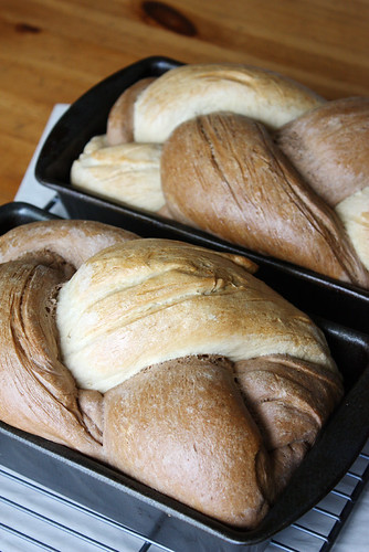 fresh-baked bread.