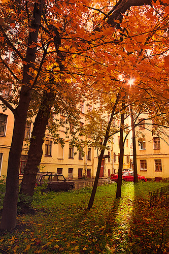 When the sun peeks into the courtyard by dyadyavasya
