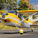 Yellow on White Cessna by planephotoman